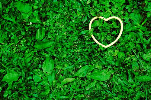 Gelbes Herz auf einer grünen Wiese